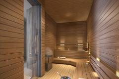 1000 Museum Sauna